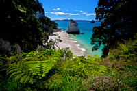 Te Hoho Rock: Cathedral Cove