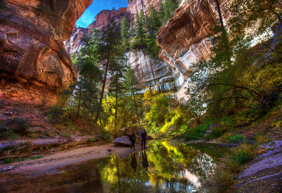 Fall Reflections in the Canyon - The Subway, Zion National Park